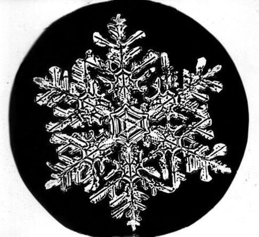 Flocon de neige de Bentley 3