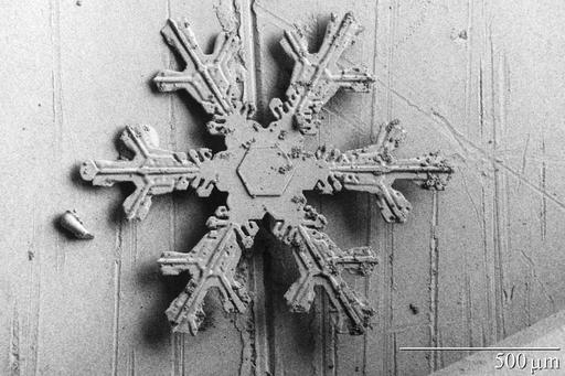Flocon de neige hexagonal