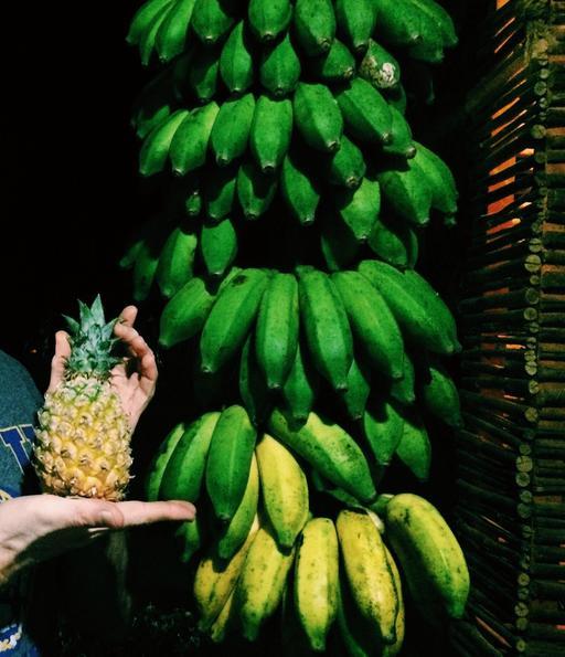 Fruits de saison au Sri Lanka
