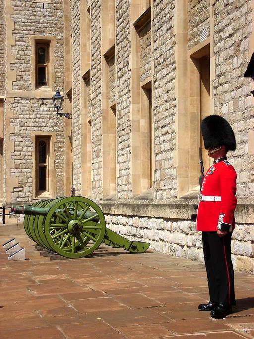 Garde britannique à bonnet noir