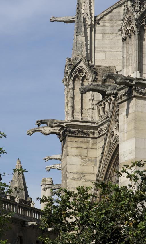 Gargouilles à Notre-Dame de Paris