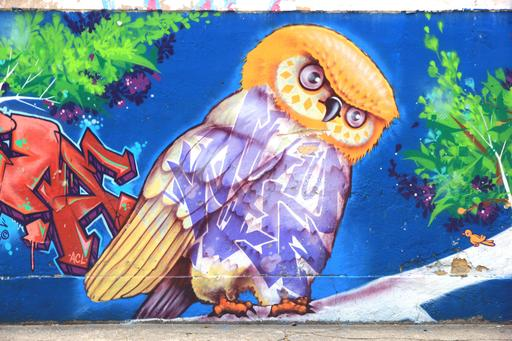 Graffiti de hibou au Brésil