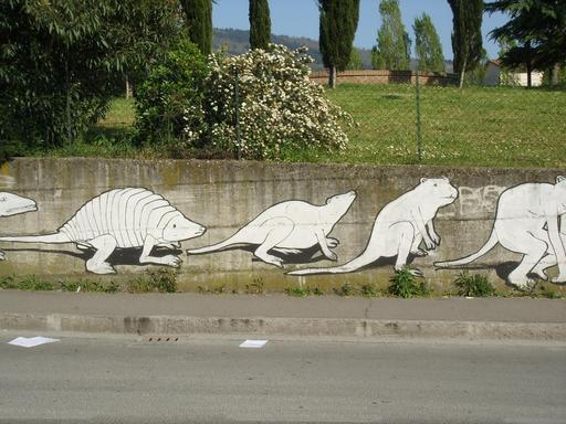Graffiti des étapes de l'évolution de 20 à 23
