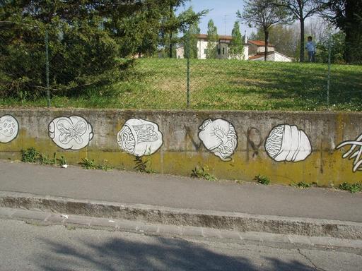 Graffiti des étapes de l'évolution de 10 à 14