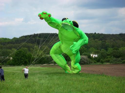 Grenouille géante