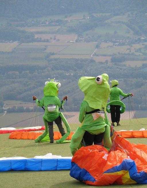 Grenouilles volantes de la Coupe Icare