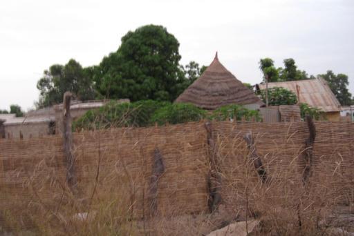 Habitat traditionnel en Casamance
