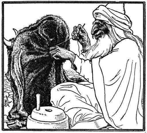 Hasan dans la peau de bête