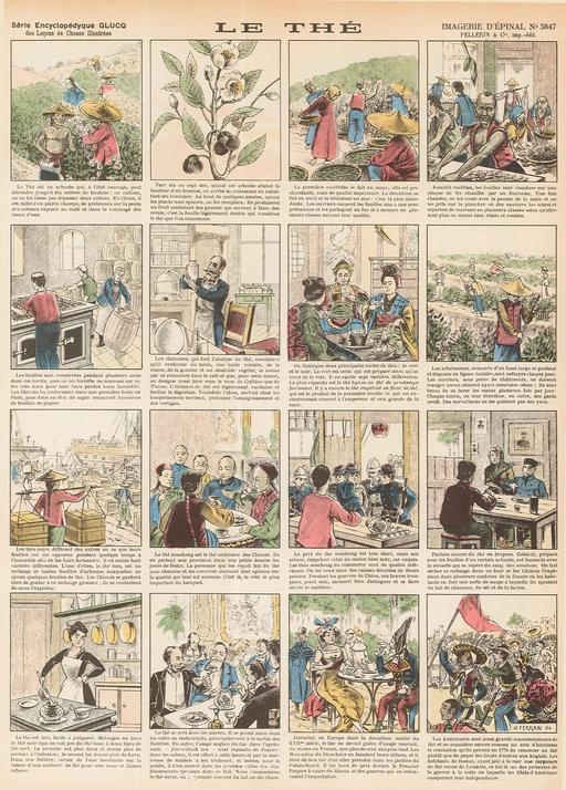 Histoire du thé en seize vignettes