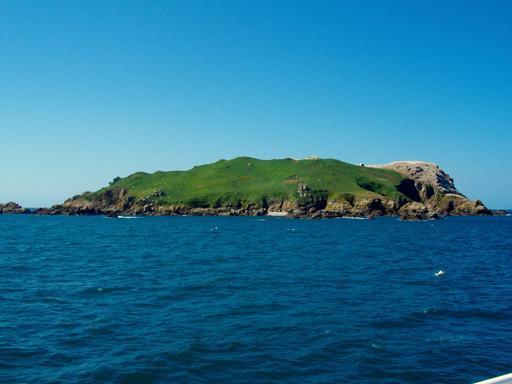 L'île Rouzic en Bretagne