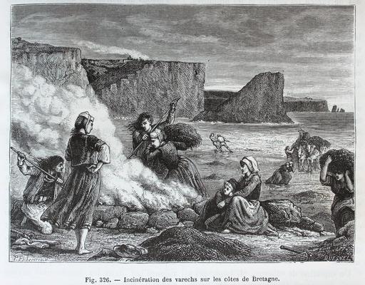Incinération du varech sur les côtes de Bretagne en 1873