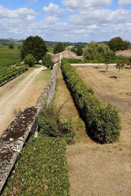 Jardin dans un vignoble