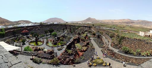 Jardin de cactus aux Canaries