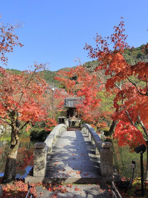 Jardin de Eikan-do Zenrin-ji à Kyoto