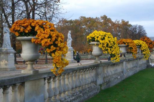 Jardin du Luxembourg en automne