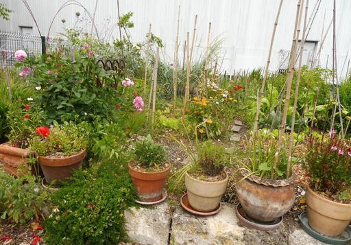 Jardin partagé à Bordeaux