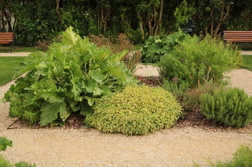 Jardin Saint-Louis à Loches