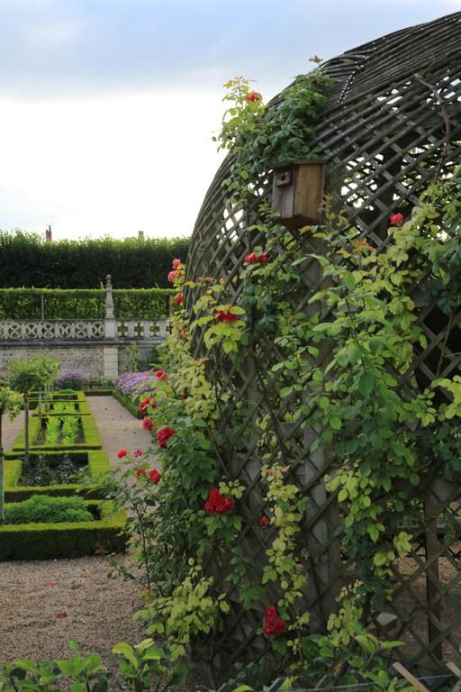 Jardins de Villandry-37.