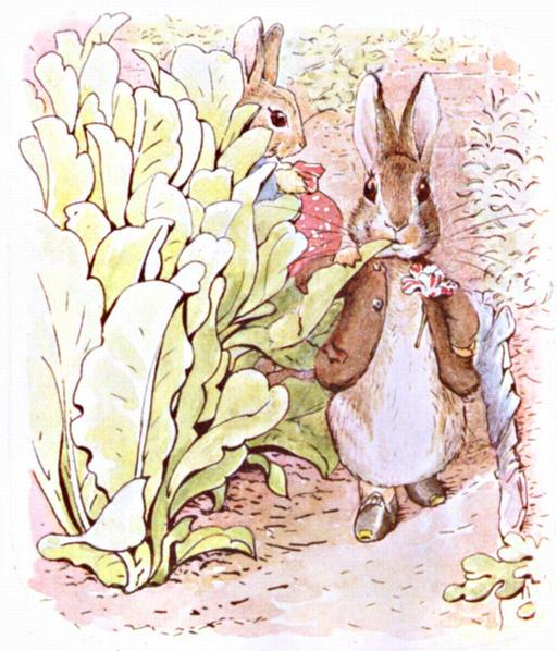 Jeannot Lapin - 13