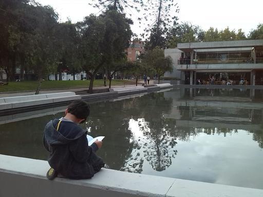 Jeune lecteur au bord d'une piscine