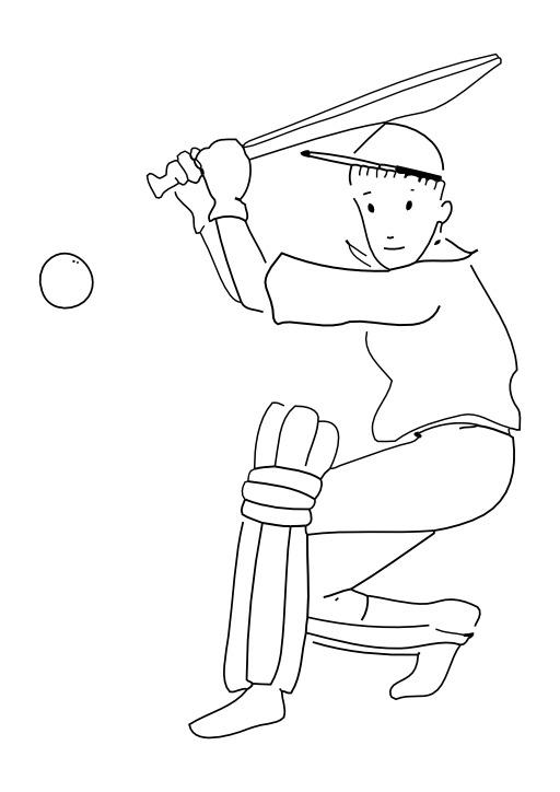 Jouer au cricket