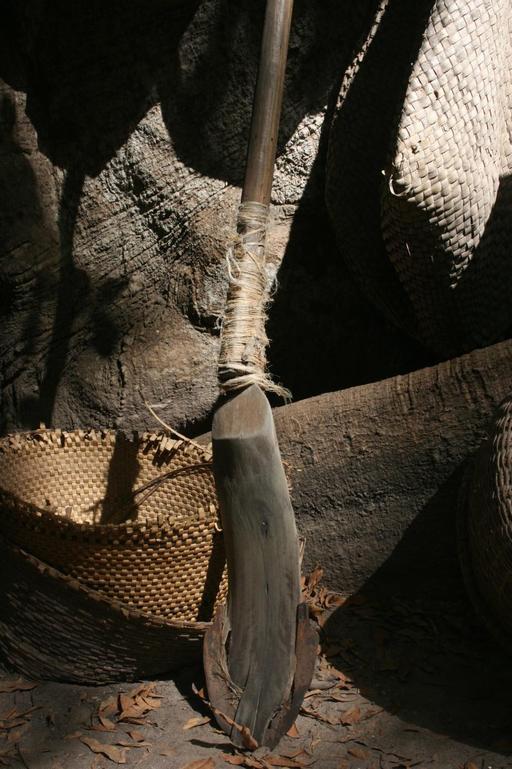 Kadiandou utilisé pour le labour des rizières