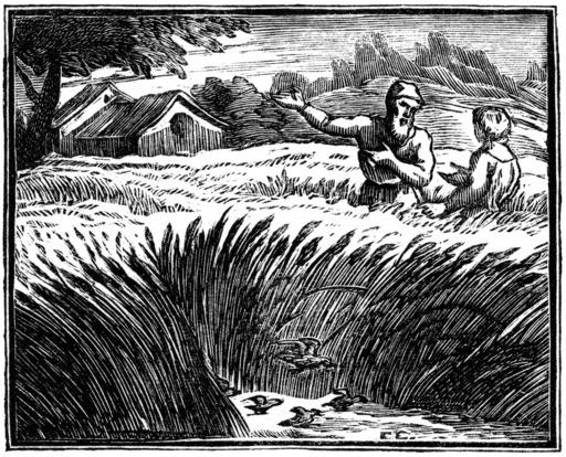 L'alouette et ses petits, avec le maître d'un champ