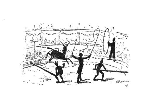 L'âne Pinocchio au cirque