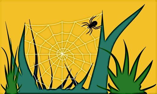 L'araignée et sa toile