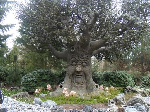 L'arbre du bois des contes aux Pays-Bas