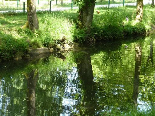 L'Eau Bourde dans le parc du Moulineau