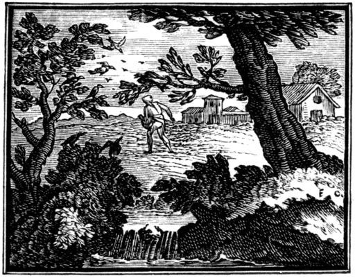 L'hirondelle et les petits oiseaux