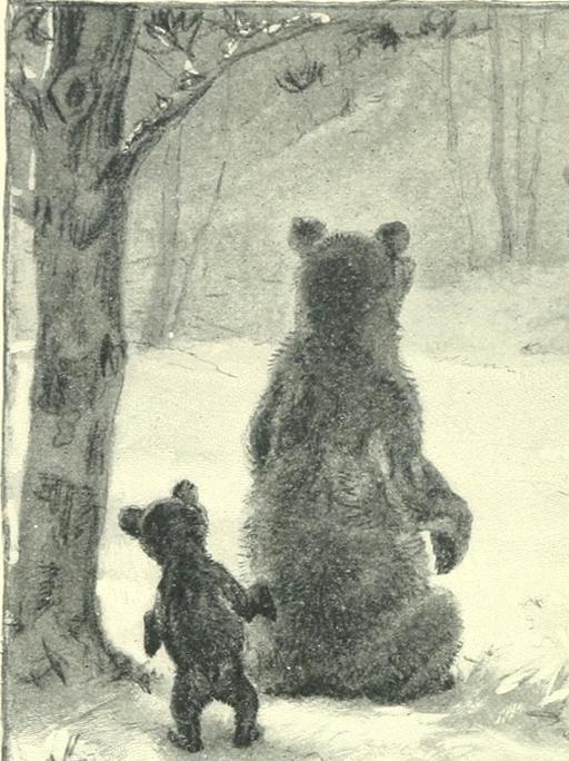 L'ourse et son ourson