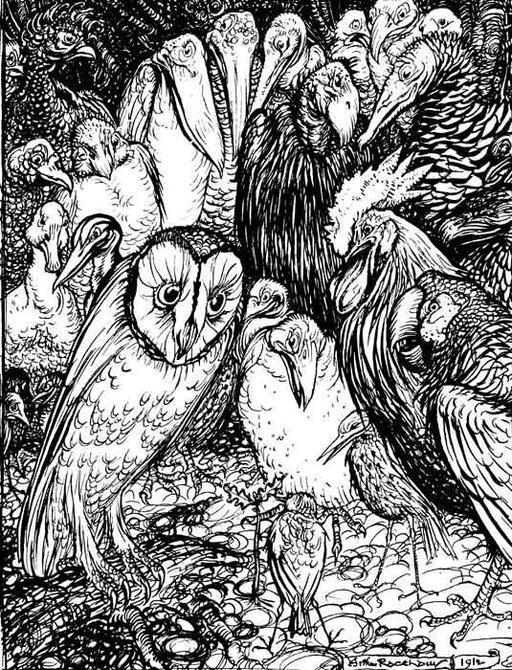 La chouette et les oiseaux