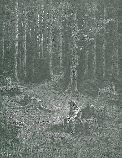 La Forêt et le Bucheron