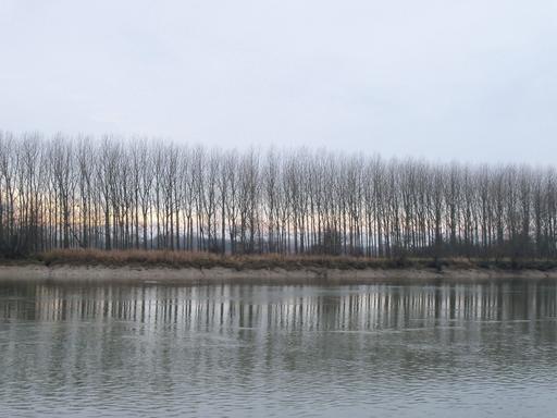 La Garonne en hiver