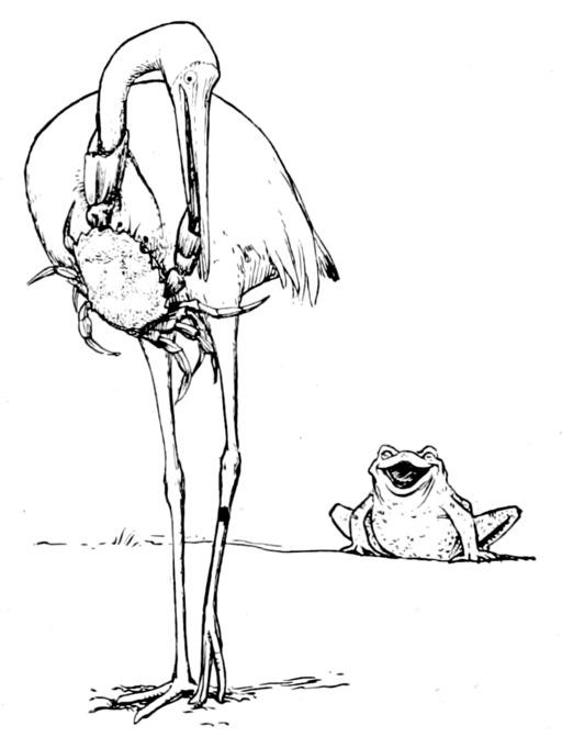 La grue et le crabe
