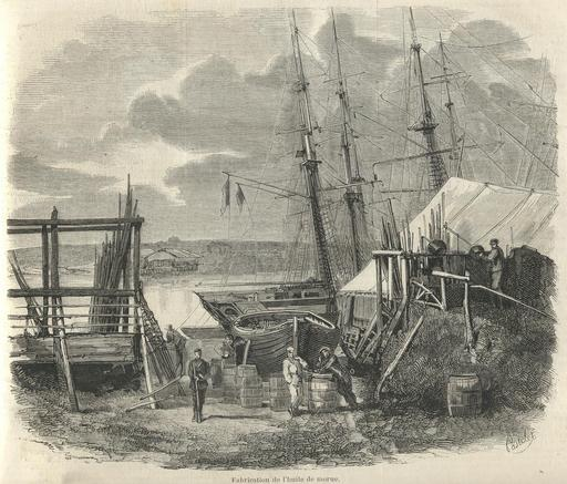 La pêche de la morue à Terre-Neuve en 1858