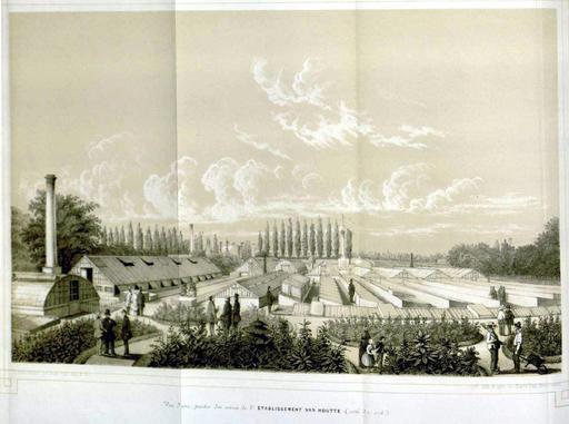 La pépinière de Gentbrugge en 1850