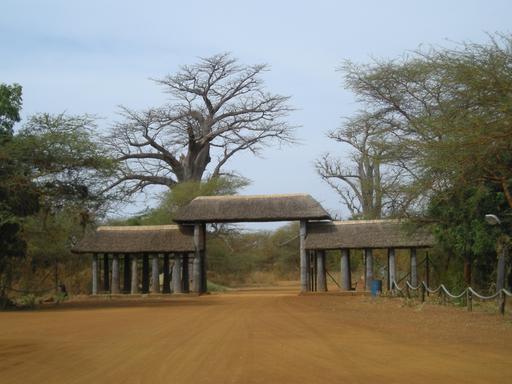 La Réserve de Bandia au Sénégal