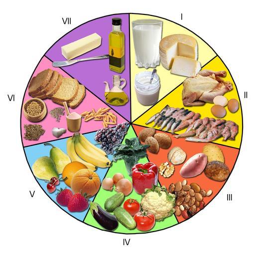 La roue des aliments