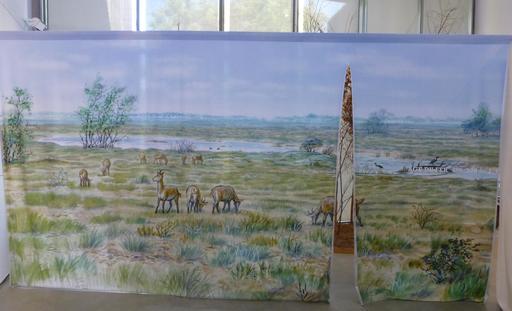Lande protohistorique