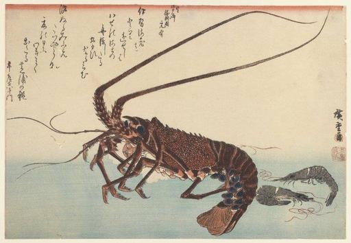 Langouste et crevettes