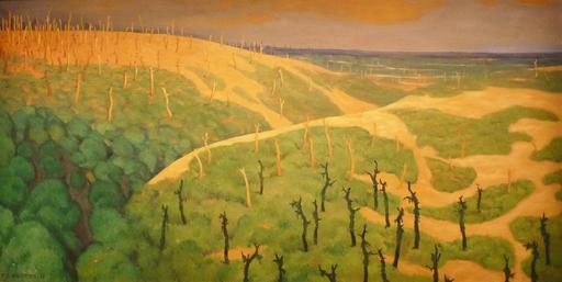 Le Bois de la Gruerie et le ravin des Meurissons sur le Front de la Marne en 1917