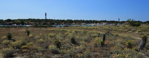 Le Cap Ferret et son phare vus depuis le Mimbeau