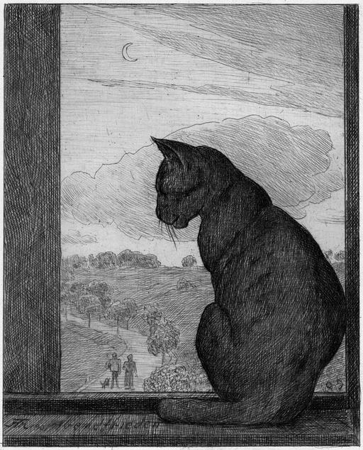 Le chat à la fenêtre
