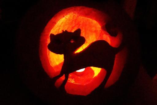 Le chat d'Halloween