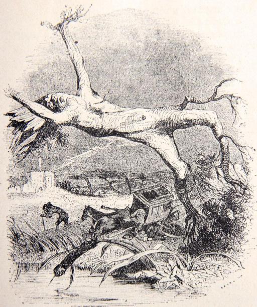 Le chêne et le roseau
