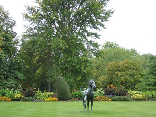 Le cheval au pas à Cambridge