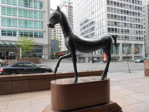 Le cheval au pas de Montréal